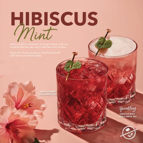 Hibiscus Mint_Combined Visual-01[2]