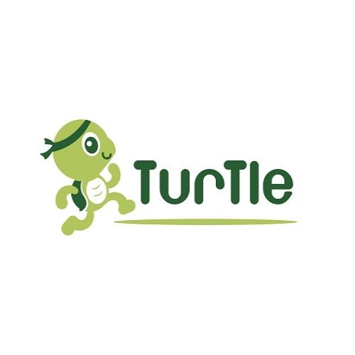 Resized TURTLE logo